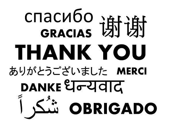 danke-feedback